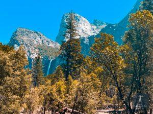 best way to explore Yosemite National Park