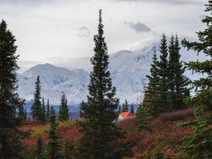 Lodging & Dining In Denali National Park