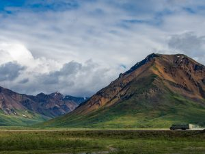 Planning Your Trip To Denali National Park