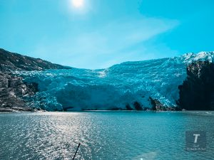 Prince William Sound Glaciers