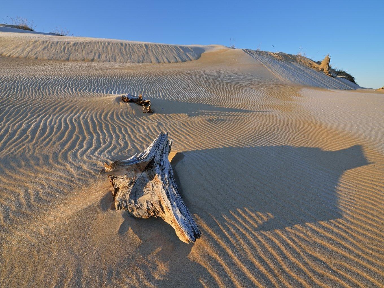 Silver Lake Sand Dunes | West Michigan